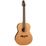 Seagull Coastline Cedar Folk Acoustic/Electric Guitar Solid Cedar Top 032525
